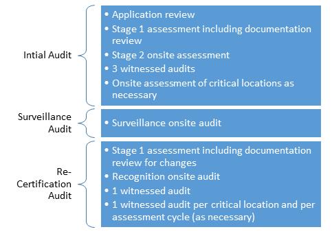 MDSAP Audit Cycle