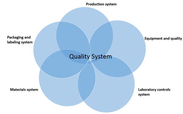 six system inspection model