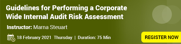 Guidelines for Performing a Corporate Wide Internal Audit Risk Assessment