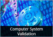 Computer System Validation - Reduce Costs and Avoid 483s: 2-day In-person Seminar